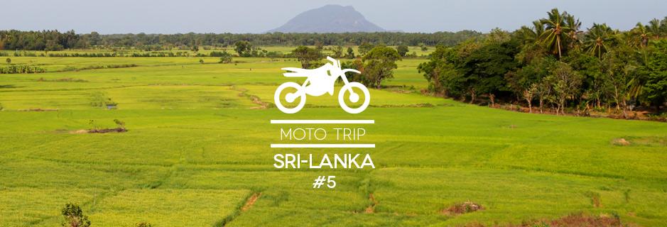 Sri Lanka #5 : à moto vers Sigiriya, Dambulla et Polannaruwa