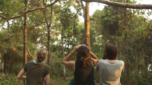 Kerala-birdsancturary-10